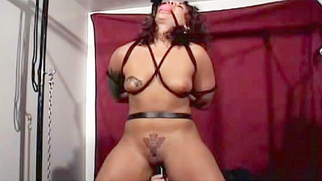 BDSM, Dungeon, Gagging, Hanging, Maledom, Tattoo, Tied, Torture, Wrap bondage
